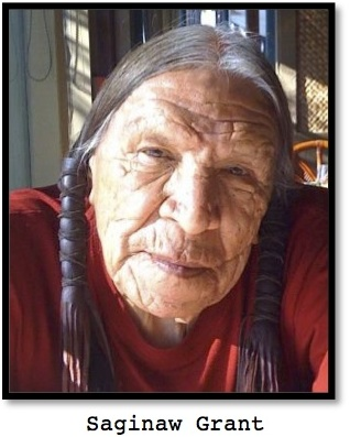 Saginaw Grant, American Indian for ESL lesson for The Lone Ranger