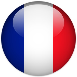 Flag of France  ESL lessons at Movies Grow English